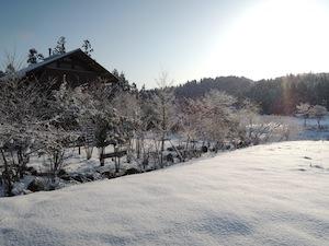 我が家の冬景色