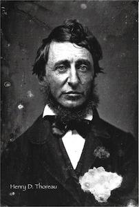 ヘンリー・デイヴィッド・ソロー39歳のポートレイト