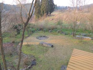 春眠中の芝生