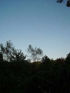 夕刻、東の空に月が見えます。