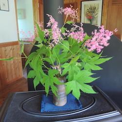 キョウカノコ:備前焼の花器