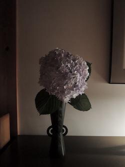 高岡銅器の花器と紫陽花