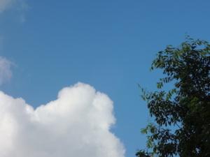 梅雨明けの空の下