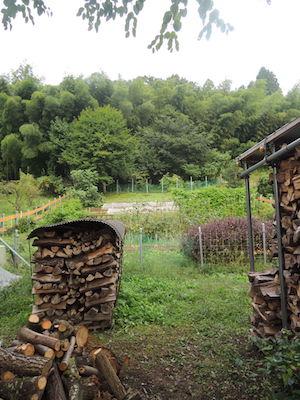 資産運用の一環としての菜園と薪