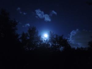 中秋の名月_月の出