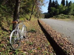 峠。桜の木の下で