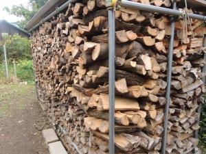 金山の丘陵から切り出した薪