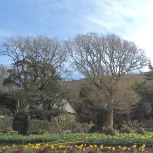 グレンヴェー城内の公園