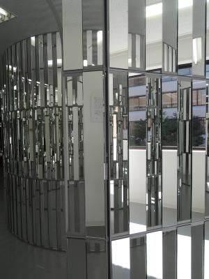 A mirror world